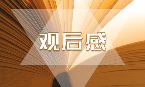 东京奥运会开幕式观看优秀心得感想2021