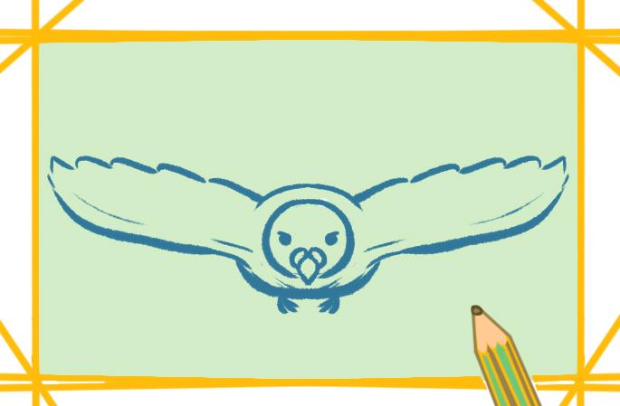 美丽的白鸽上色简笔画要怎么画