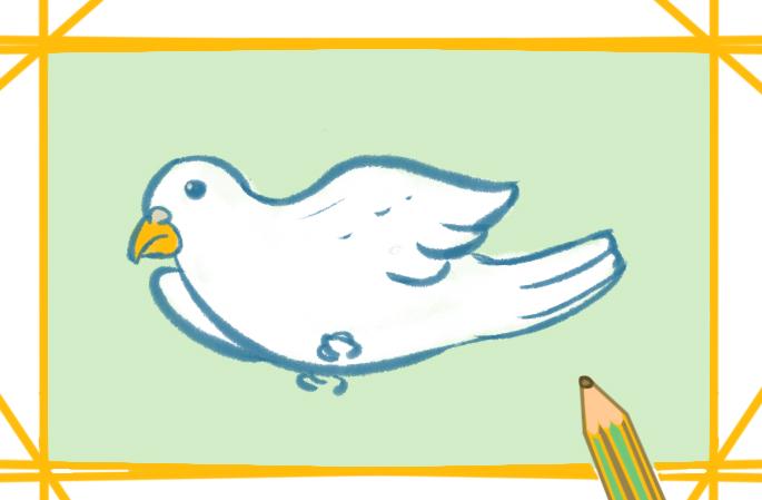 洁白的鸽子上色简笔画要怎么画
