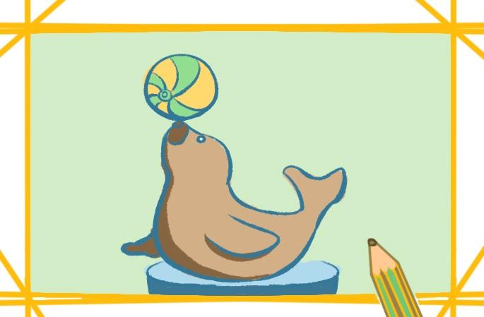 顶球的海豹上色简笔画要怎么画