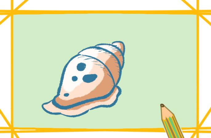 漂亮的海螺上色簡筆畫圖片教程步驟