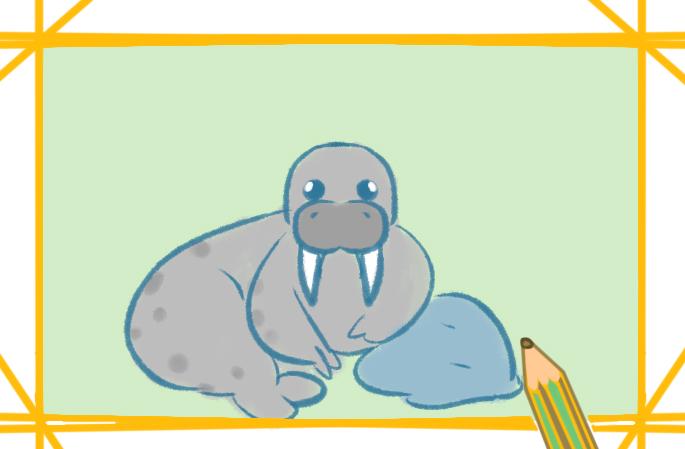 海洋生物之海象簡筆畫圖片大全