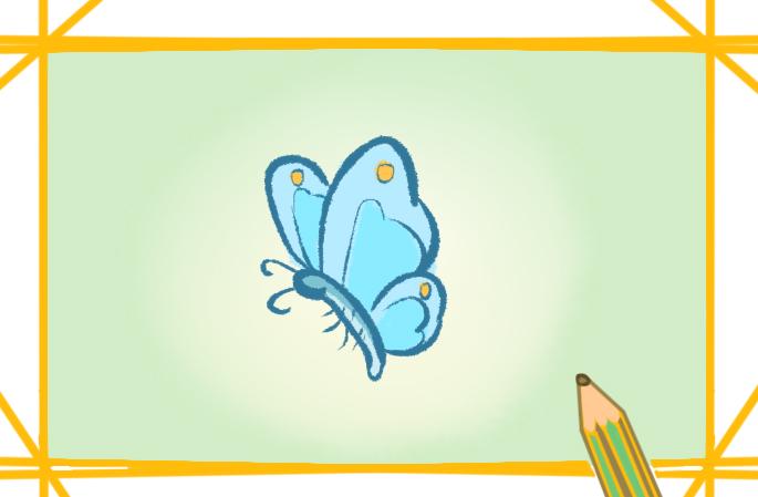 美丽的蝴蝶上色简笔画图片教程