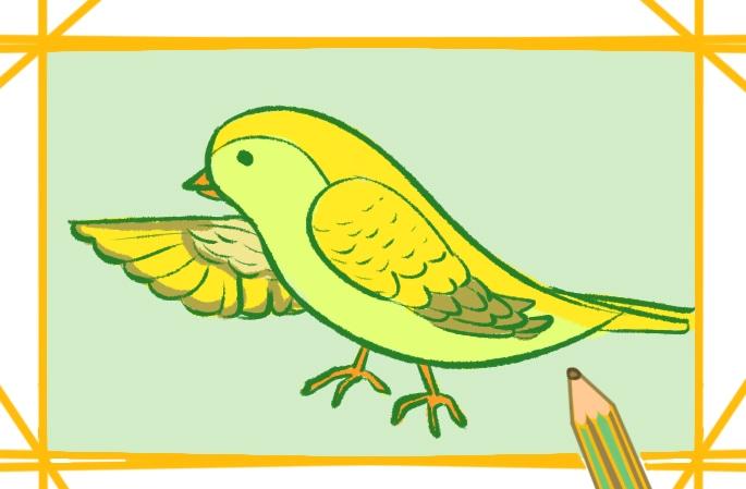 黄色的小鸟上色简笔画要怎么画