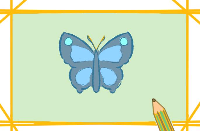 灰藍色的蝴蝶上色簡筆畫要怎么畫