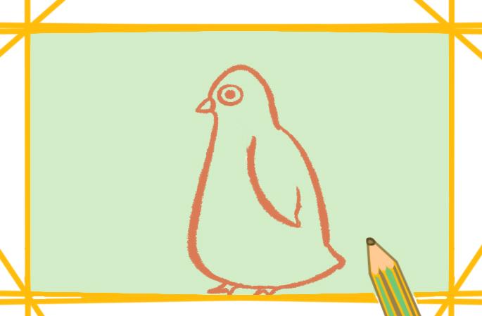 可爱的企鹅上色简笔画要怎么画