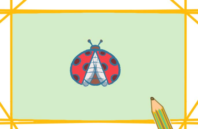 彩色的七星瓢虫简笔画怎么画