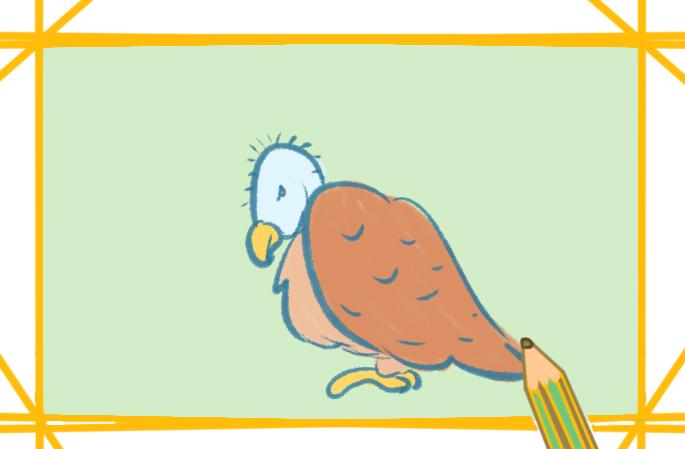 禿頭的禿鷲上色簡筆畫要怎么畫