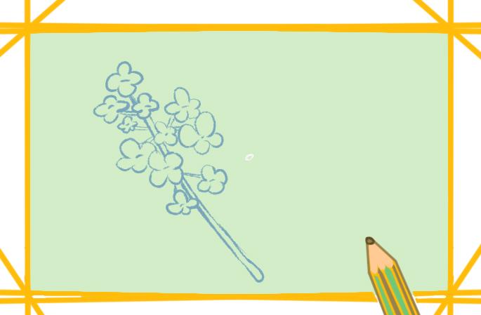 一枝漂亮的黄花上色简笔画要怎么画