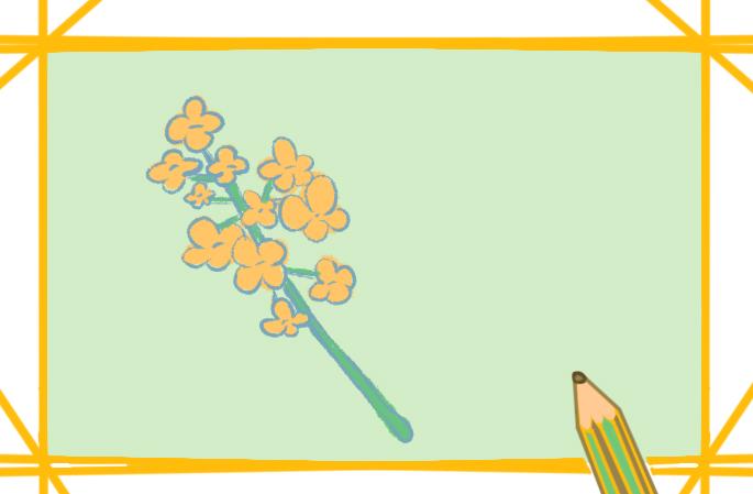 漂亮的小黃花上色簡筆畫要怎么畫