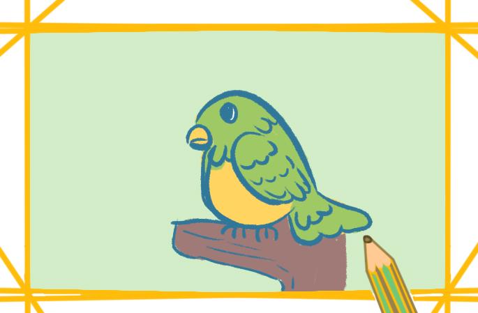 绿色鹦鹉上色简笔画要怎么画