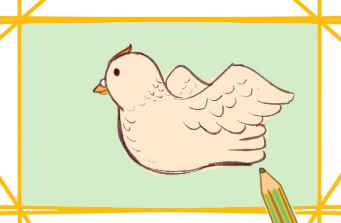 胖乎乎的鸽子简笔画图片怎么画