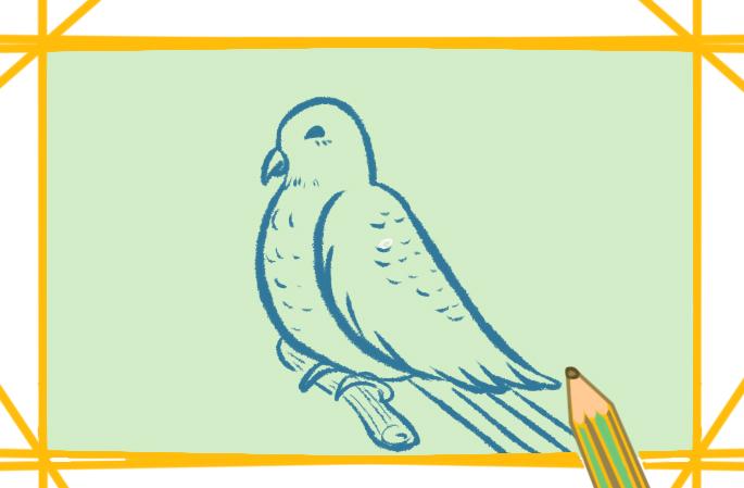 简单的画小鸟好看又简单怎么画