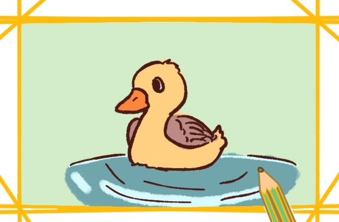 可爱的柯尔鸭上色简笔画图片教程