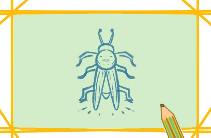 夏日萤火虫上色简笔画图片教程