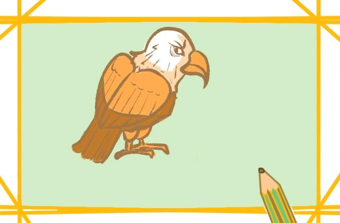 简单的老鹰图片怎么画