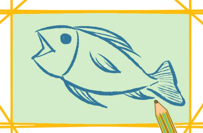 漂亮的鱼上色简笔画要怎么画