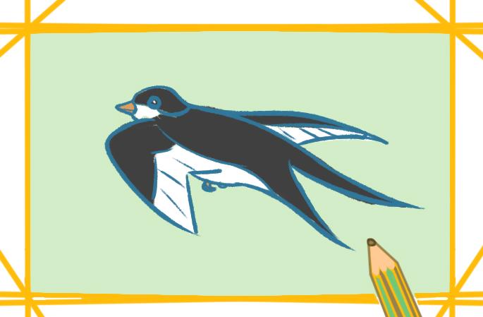 漂亮的小燕子上色簡筆畫要怎么畫