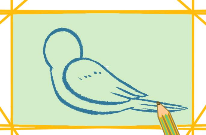 鸟简笔画一步一步学画画