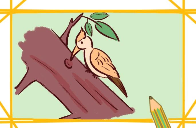 漂亮的啄木鳥上色簡筆畫要怎么畫