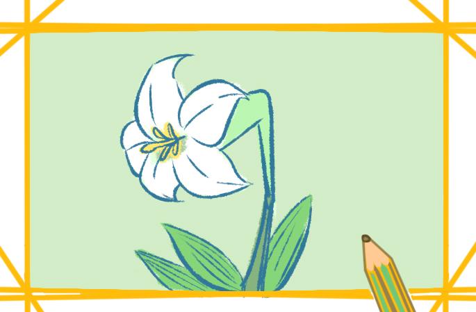 百合花帶顏色簡筆畫教程