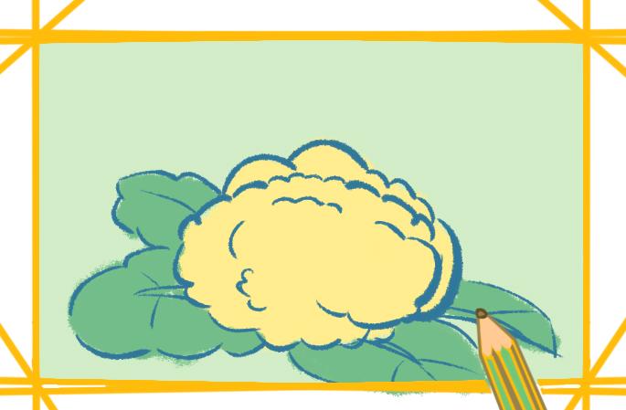 容易画的花椰菜简笔画要怎么画