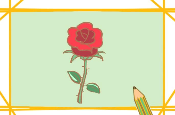 艷麗的玫瑰上色簡筆畫圖片教程