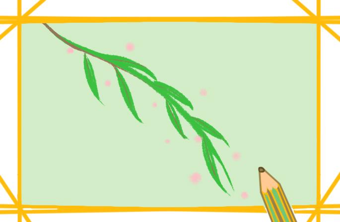 柳枝简笔画彩色图片怎么画
