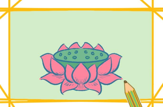 好看的莲花座上色简笔画图片教程