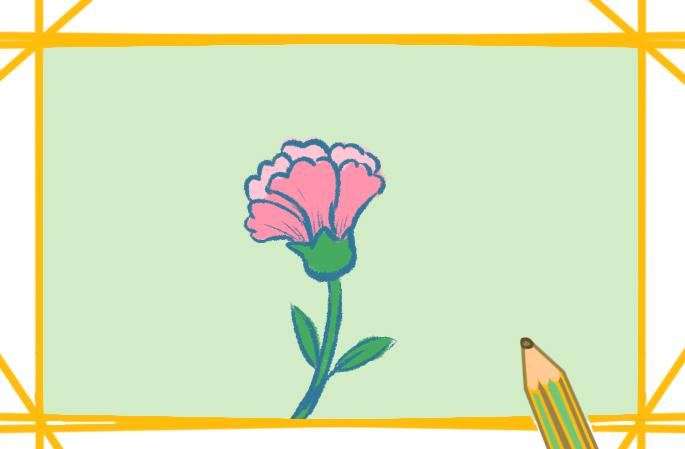 粉红色康乃馨上色简笔画要怎么画