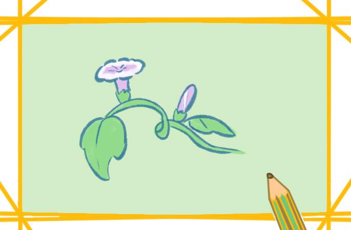 美丽的喇叭花上色简笔画要怎么画