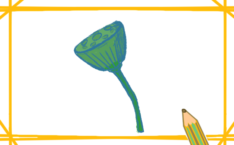 荷花的莲蓬简笔画带颜色怎么画