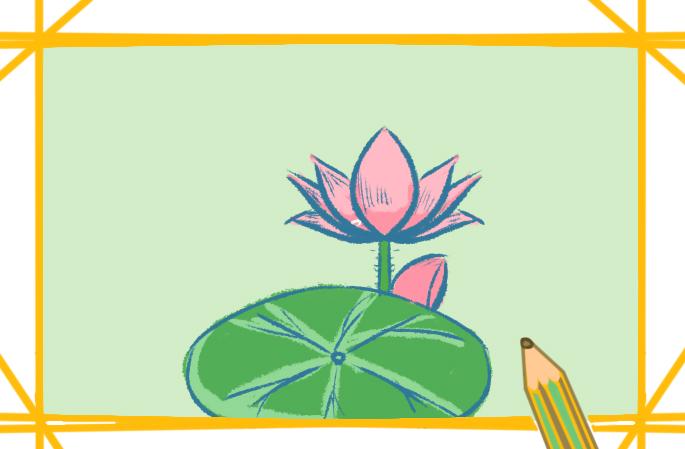 池边的莲花上色简笔画要怎么画