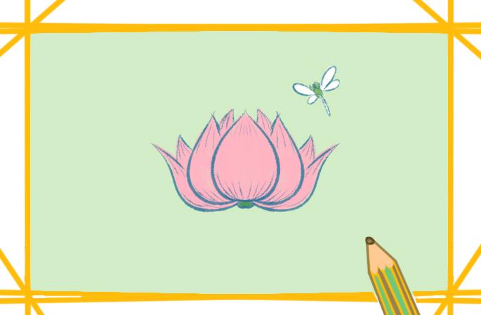 盛开的莲花上色简笔画要怎么画