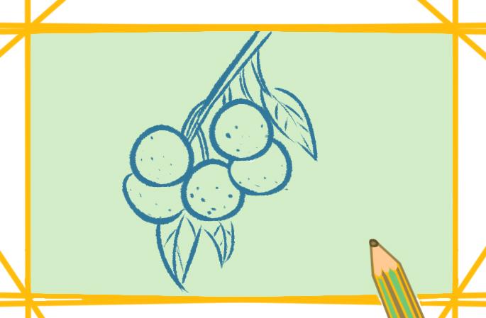 香甜龙眼原创简笔画图片教程步骤