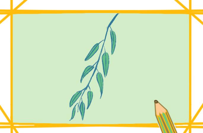 漂亮的柳枝上色简笔画原创步骤图