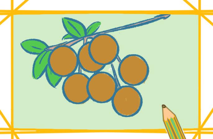 水果之龙眼上色简笔画要怎么画