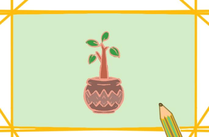 绿色盆栽植物上色简笔画要怎么画