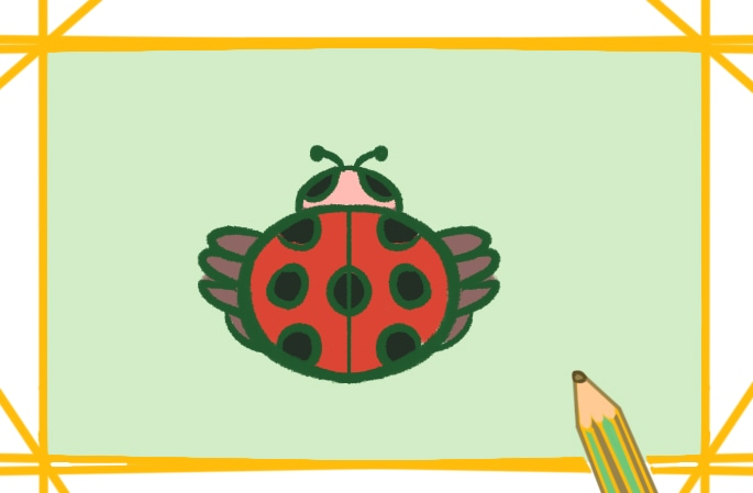 红色瓢虫上色简笔画要怎么画