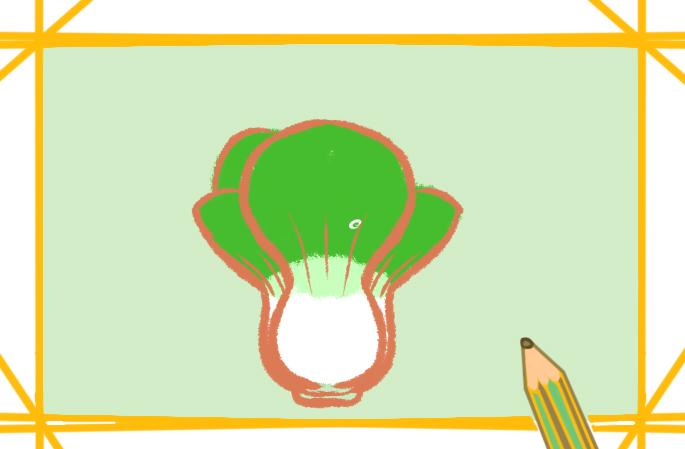 简单又漂亮的青菜上色简笔画要怎么画