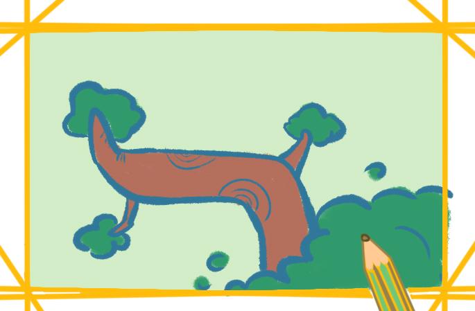 超简单的松树上色简笔画要怎么画
