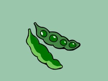 绿色豌豆上色简笔画图片教程