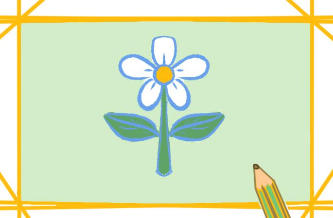 漂亮的白花上色簡筆畫圖片教程步驟