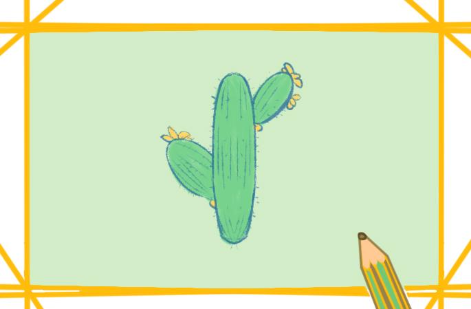 夏天的仙人掌简笔画图片教程