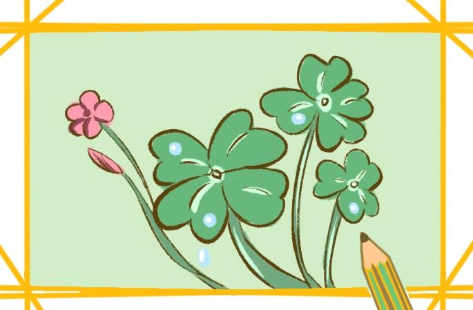 漂亮的三叶草简笔画图片怎么画
