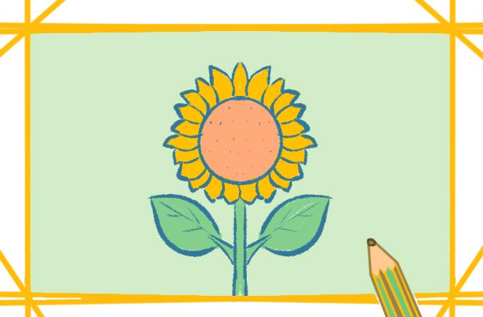 简单的向日葵简笔画图片怎么画