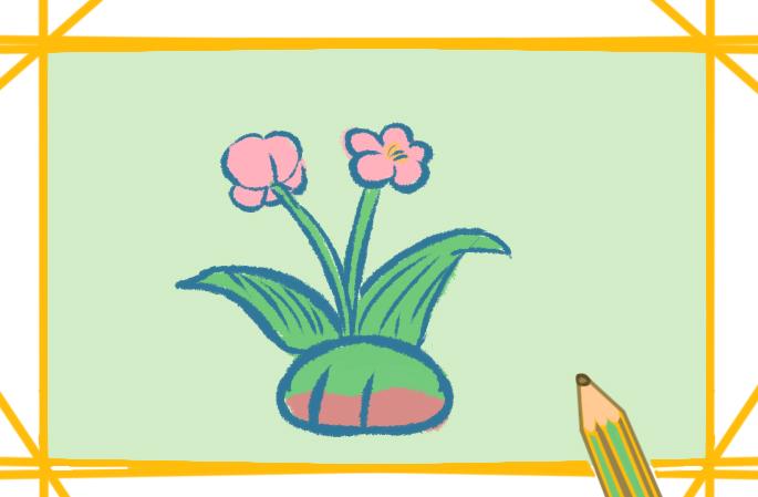 花的图片简笔画彩色图片教程