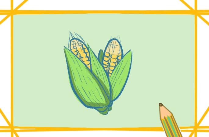 漂亮好看的玉米简笔画图片好看简单