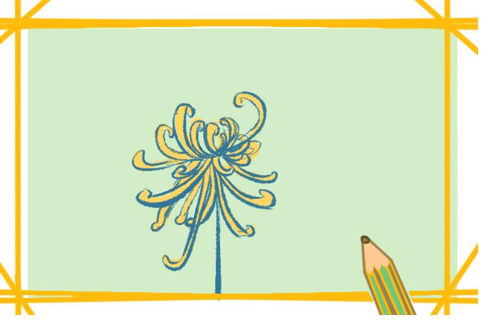 金秋的菊花上色简笔画要怎么画